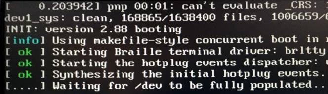 devuan_boot_pic_stuck.jpg